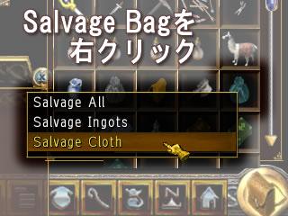Salbage Bag